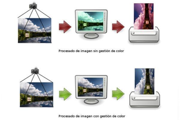 color copia